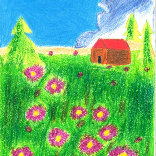 House in a field of grass and flowers with blue sky background