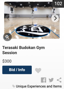 screenshot of Budokan gym session auction listing